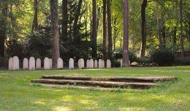 Begraafplaats en bos Stock Fotografie