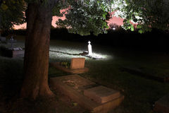 Begraafplaats met bomen Stock Afbeeldingen