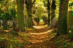 Begraafplaats met Zonnestraal in de Herfst royalty-vrije stock afbeeldingen