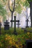 Begraafplaats in mist in de herfst Royalty-vrije Stock Foto's