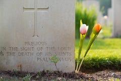 Begraafplaats van de Holten de Canadese oorlog royalty-vrije stock fotografie