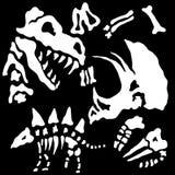 Begrabenes Dinosaurier-Fossil entbeint Hintergrund Stockbild
