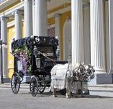 Begrafenis Stock Afbeelding