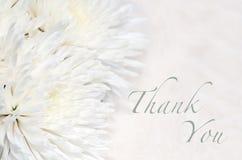 Begravningen tackar dig att card Royaltyfri Fotografi