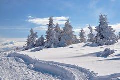 Begravt i snö som fotvandrar slingan royaltyfri fotografi
