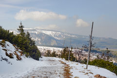 Begravt i snö som fotvandrar slingan i de jätte- bergen royaltyfri fotografi