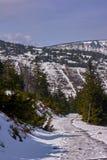 Begravt i snö som fotvandrar slingan i de jätte- bergen arkivfoton