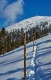 Begravt i snö som fotvandrar slingan i de jätte- bergen arkivbild