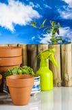 Begrepp av att arbeta i trädgården, naturtema Arkivfoto