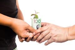 Begrepp av att framlägga växten som växer från australiska pengar som symboliserar royaltyfri bild