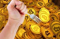 Begrepp av Bitcoin kassa Hardfork arkivbild