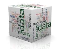 Begrepp av dataskydd Royaltyfri Fotografi