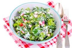 Begrepp av den sunda livsstilen, vegetarisk meny Sallad av nya örter och grönsaker royaltyfri foto