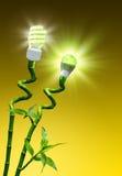 Begrepp av effektivitet på belysning royaltyfri foto