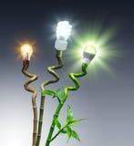 Begrepp av effektivitet på belysning - jämförelse royaltyfria foton