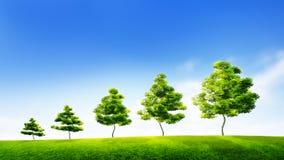 Begrepp av hållbar tillväxt i affär eller miljö- conse Arkivbild