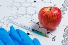 Begrepp av Icke-naturliga produkter, Gmo Injektionsspruta, blåa handskar och röda Apple på vit bakgrund med kemisk formel, Royaltyfria Foton