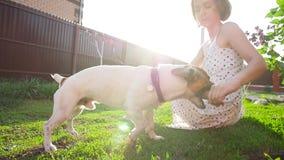 Begrepp av kamratskap och husdjur Lycklig ung kvinna och hund som har gyckel p? gr?s arkivfilmer