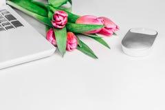 Begrepp av kvinnlig workspace med den vita bärbara datorn, musen och ljusa rosa tulpanblommor på den vita tabellen kopiera avstån royaltyfri bild