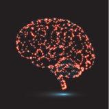 Begrepp av mänsklig intelligens med den mänskliga hjärnan Arkivbild