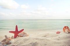 Begrepp av sommartid på den tropiska stranden Royaltyfria Bilder