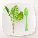 Begrepp av sunt äta eller att banta. Fotografering för Bildbyråer