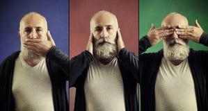 Begrepp av tre kloka apor Fotografering för Bildbyråer
