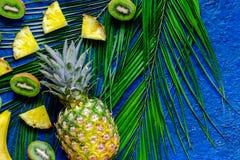 Begrepp av tropiska frukter för sommar Kiwin ananas och gömma i handflatan filialen på bästa sikt för blåtttabellbakgrund royaltyfria bilder