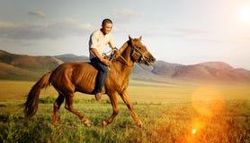Begrepp för berg för natur för fält för ridninghäst rid- Arkivfoton