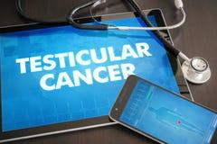 Begrepp för diagnos för Testicular cancer (cancertyp) medicinskt på flik royaltyfria foton