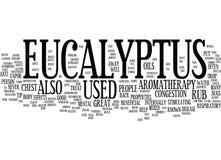 Begrepp för eukalyptusordmoln Royaltyfri Bild
