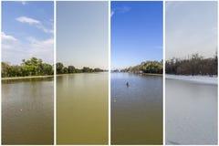 Begrepp för fyra säsonger Effekten av de 4 säsongerna på det stads- et arkivbild