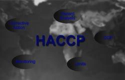Begrepp för HACCP-matsäkerhet royaltyfri bild