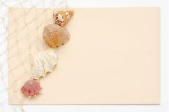 Begrepp för havsskalbrevpapper med att förtjäna och ljus persikabakgrund Arkivfoto