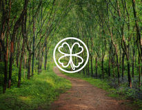 Begrepp för inspiration för grönt växt av släktet Trifoliumblad miljö- arkivfoto