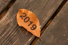 Begrepp för nytt år av 2019 med bladet och naturen Vektor Illustrationer