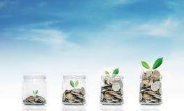 Begrepp för pengarbesparingtillväxt, glass krus med mynt och växter som växer, på bakgrund för blå himmel Royaltyfria Bilder