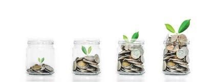 Begrepp för pengarbesparingtillväxt, glass krus med mynt och växter växa som isoleras på vit bakgrund Royaltyfri Bild