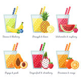 Begrepp för vektor för fruktsmoothie (fruktsaft) Menybeståndsdel för kafé eller restaurang Modern plan design Arkivfoto