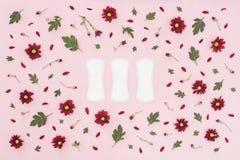 Begrepp f?r menstruations- period Kvinnahygienskydd Kvinnliga hygienblock f?r bomull p? rosa bakgrund med r?da blommor, kronblad  arkivbilder