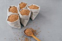 Begrepp f?r organiskt lantbruk Fem lilla säckar med bovete med användbar rekvisita, kan lagas mat för garnering sund n?ring royaltyfri fotografi