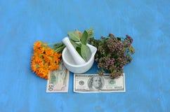 Begrepp för växt- medicin och pengar- hälsa är pengar Arkivfoto