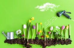 begrepp som gör trädgårds- male fjäderarbete fotografering för bildbyråer