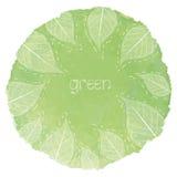 Begreppet av gröna sammansättningar i grön vattenfärgdroppe med sidor formar på in Arkivbild