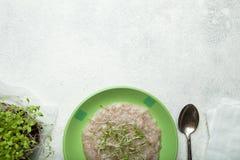 Begreppet av sund näring- och viktförlust Havremjöl och mikro-gräsplan, tomt utrymme för text fotografering för bildbyråer