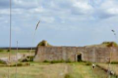 Begreppet av unfocused fördärvar i lantligt landskap royaltyfri foto