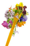 begreppet bantar blom- Royaltyfri Fotografi