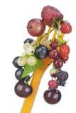 begreppet bantar fruktmakro Royaltyfri Fotografi