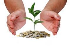 begreppet investerar pengar Arkivbild