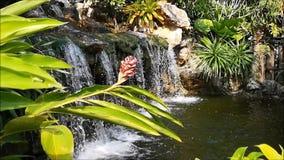 Begreppet, naturen skapades av den mänskliga handen Den lilla vattenfallet som omgavs av små träd och buskar, byggdes in i litet arkivfilmer